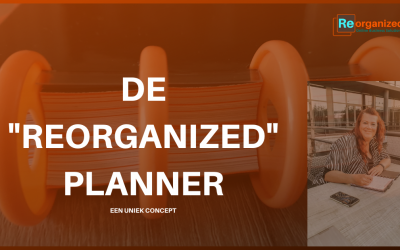 Blog Reorganized Planner